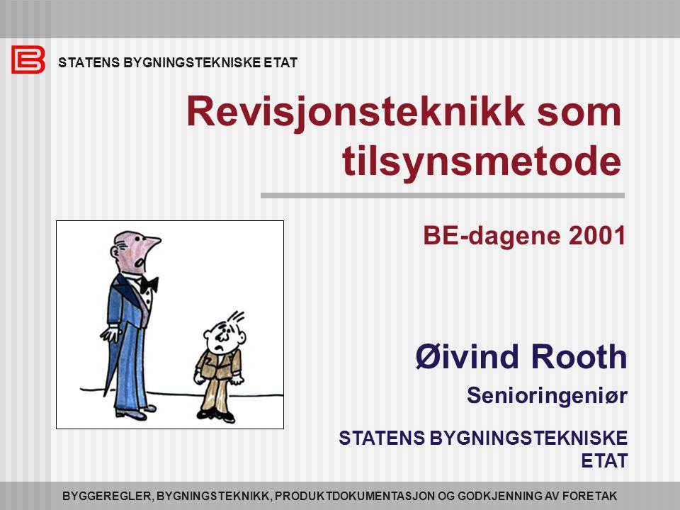 12 Tilsynsprosjektet Igangsatt av BE sommeren 2000 Mål : Lage felles arbeidsmetoder for kommunens tilsyn etter pbl.