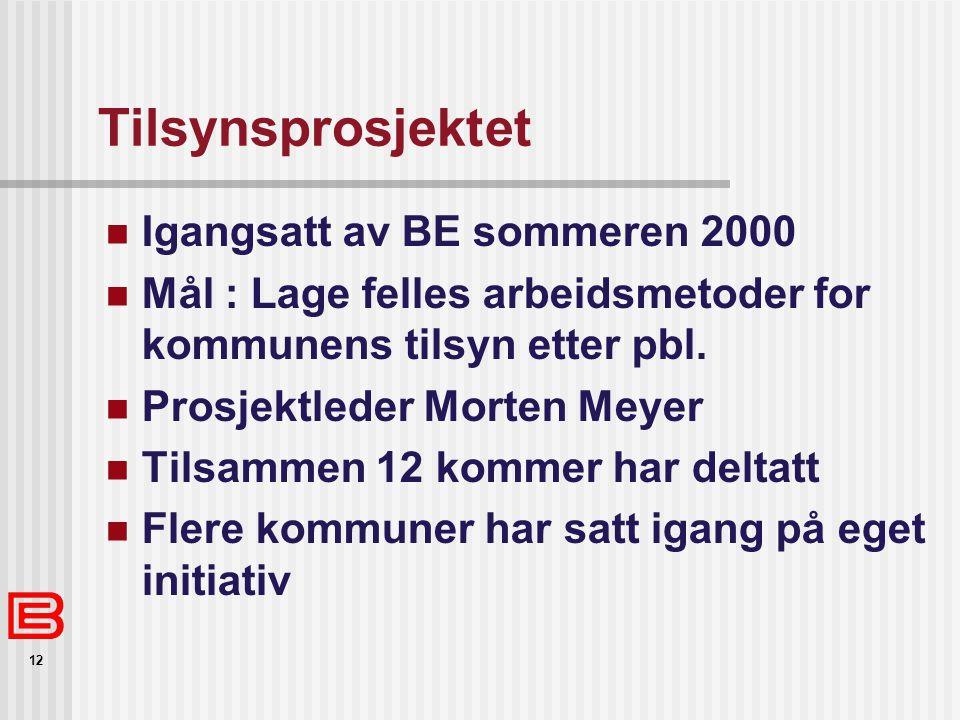 12 Tilsynsprosjektet Igangsatt av BE sommeren 2000 Mål : Lage felles arbeidsmetoder for kommunens tilsyn etter pbl. Prosjektleder Morten Meyer Tilsamm