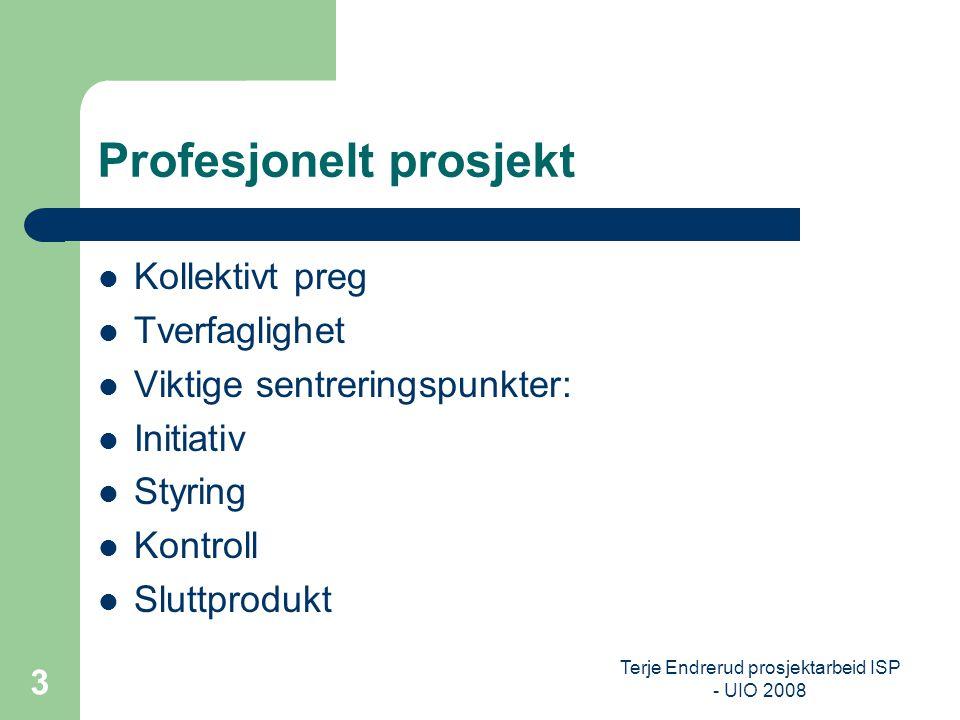 Terje Endrerud prosjektarbeid ISP - UIO 2008 3 Profesjonelt prosjekt Kollektivt preg Tverfaglighet Viktige sentreringspunkter: Initiativ Styring Kontr