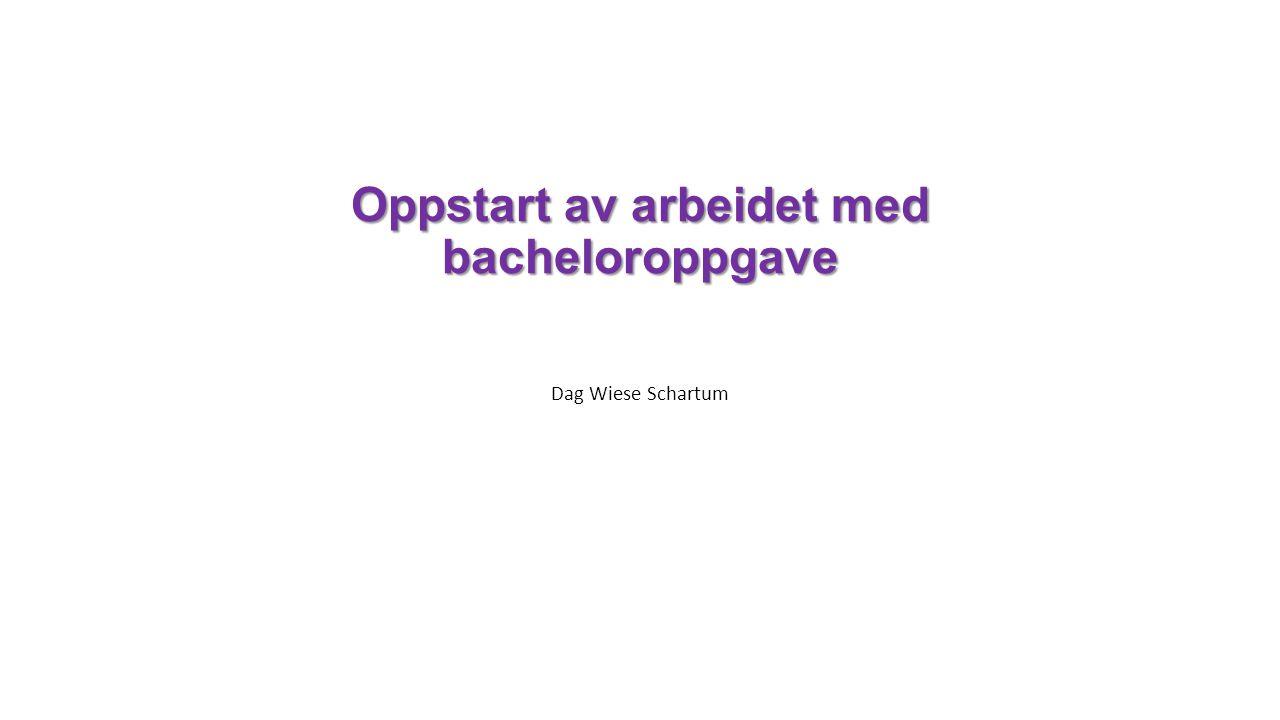 Oppstart av arbeidet med bacheloroppgave Dag Wiese Schartum
