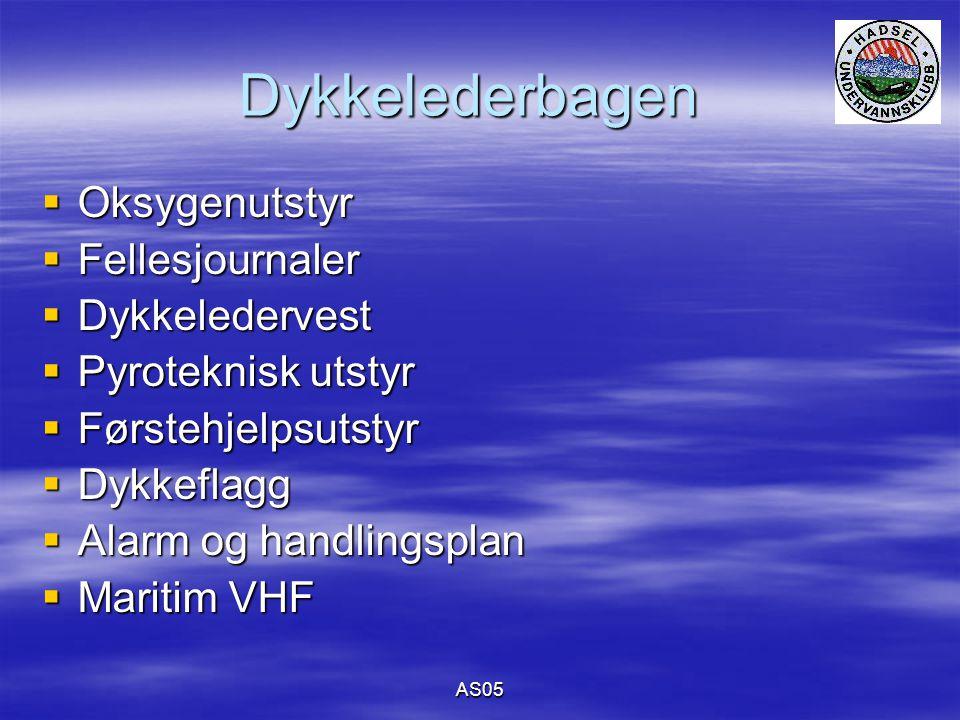 AS05 Dykkelederbagen  Oksygenutstyr  Fellesjournaler  Dykkeledervest  Pyroteknisk utstyr  Førstehjelpsutstyr  Dykkeflagg  Alarm og handlingsplan  Maritim VHF