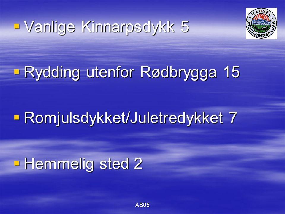 AS05  Vanlige Kinnarpsdykk 5  Rydding utenfor Rødbrygga 15  Romjulsdykket/Juletredykket 7  Hemmelig sted 2