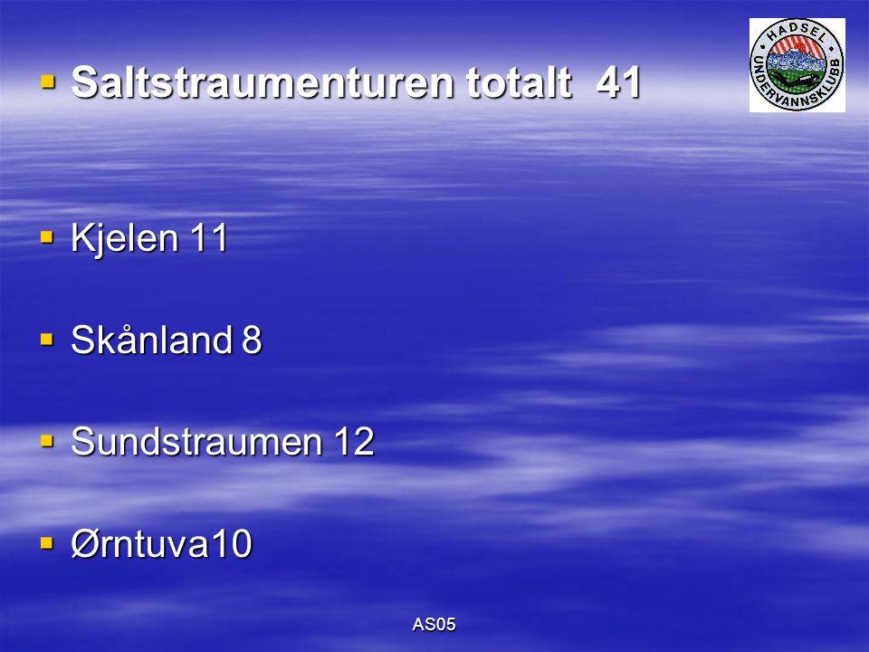 AS05  Saltstraumenturen totalt 41  Kjelen 11  Skånland 8  Sundstraumen 12  Ørntuva10