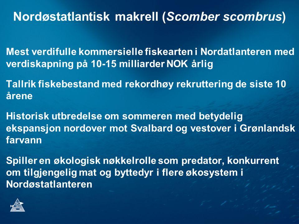 Nordøstatlantisk makrell (Scomber scombrus) Mest verdifulle kommersielle fiskearten i Nordatlanteren med verdiskapning på 10-15 milliarder NOK årlig T