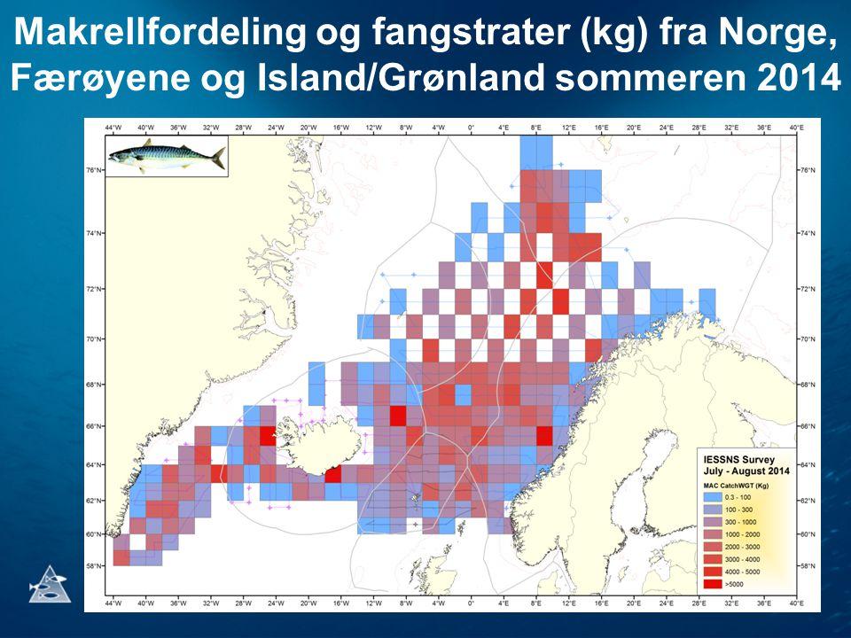Makrellfordeling og fangstrater (kg) fra Norge, Færøyene og Island/Grønland sommeren 2014