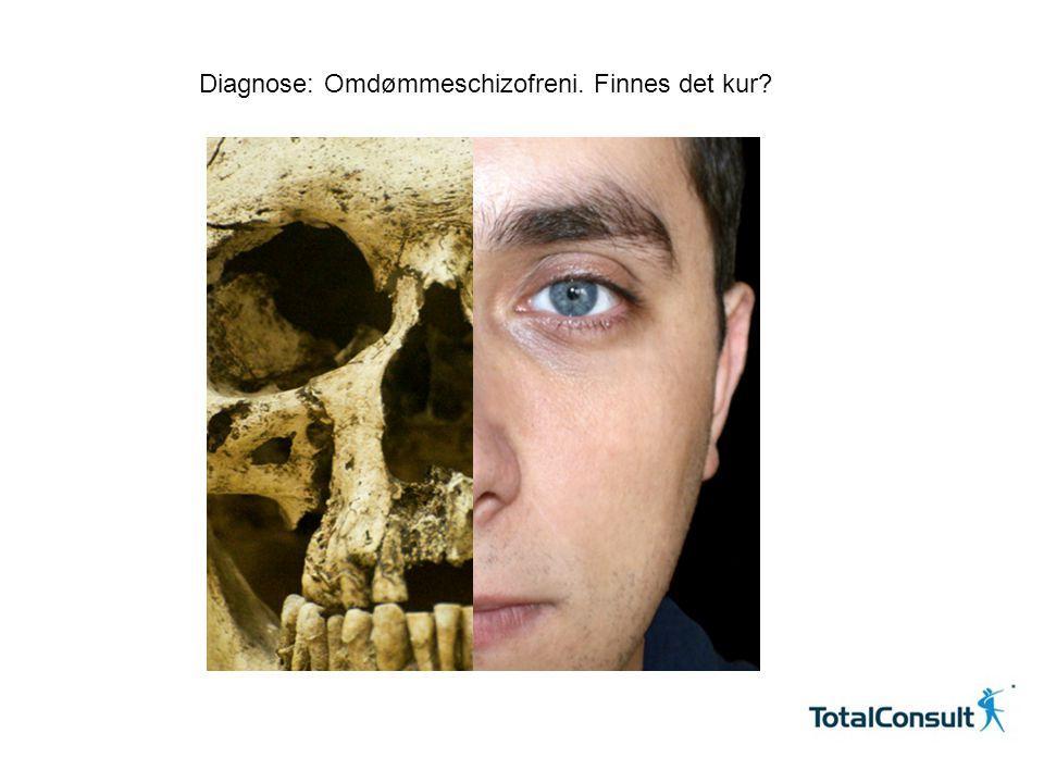 Copyright © 2010 TotalConsult Diagnose: Omdømmeschizofreni. Finnes det kur