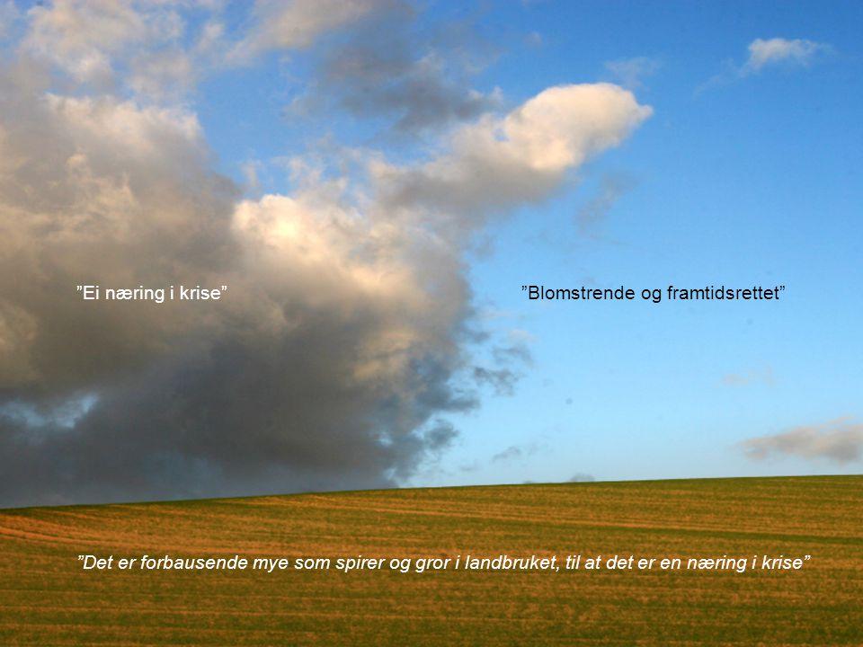 Copyright © 2010 TotalConsult Landbrukets omdømmeparadoks Ei næring i krise Blomstrende og framtidsrettet Det er forbausende mye som spirer og gror i landbruket, til at det er en næring i krise