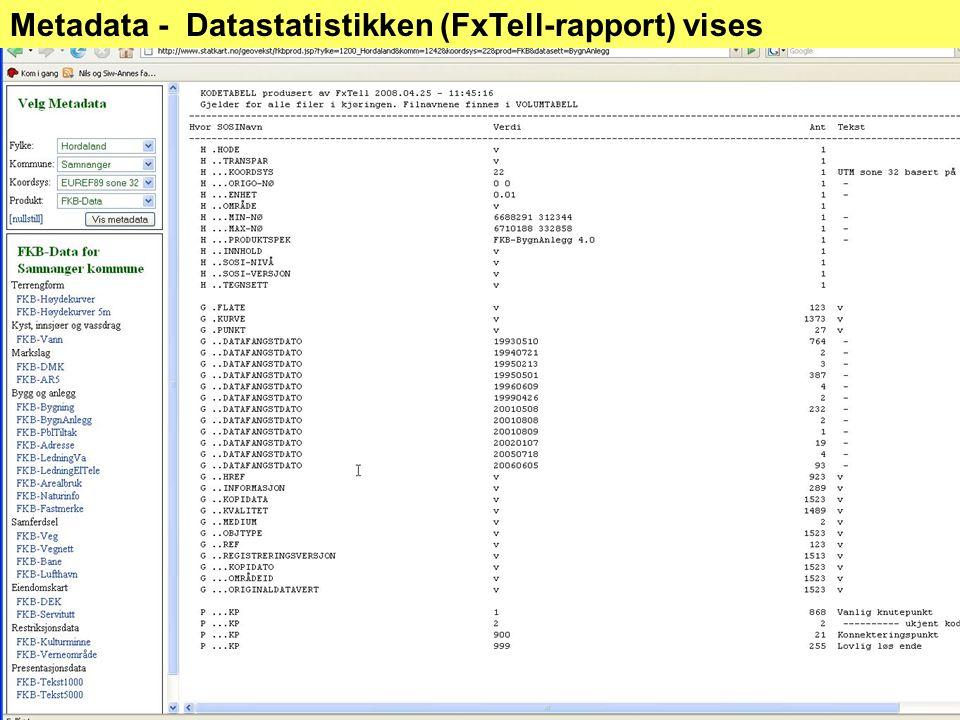 Metadata - Datastatistikken (FxTell-rapport) vises