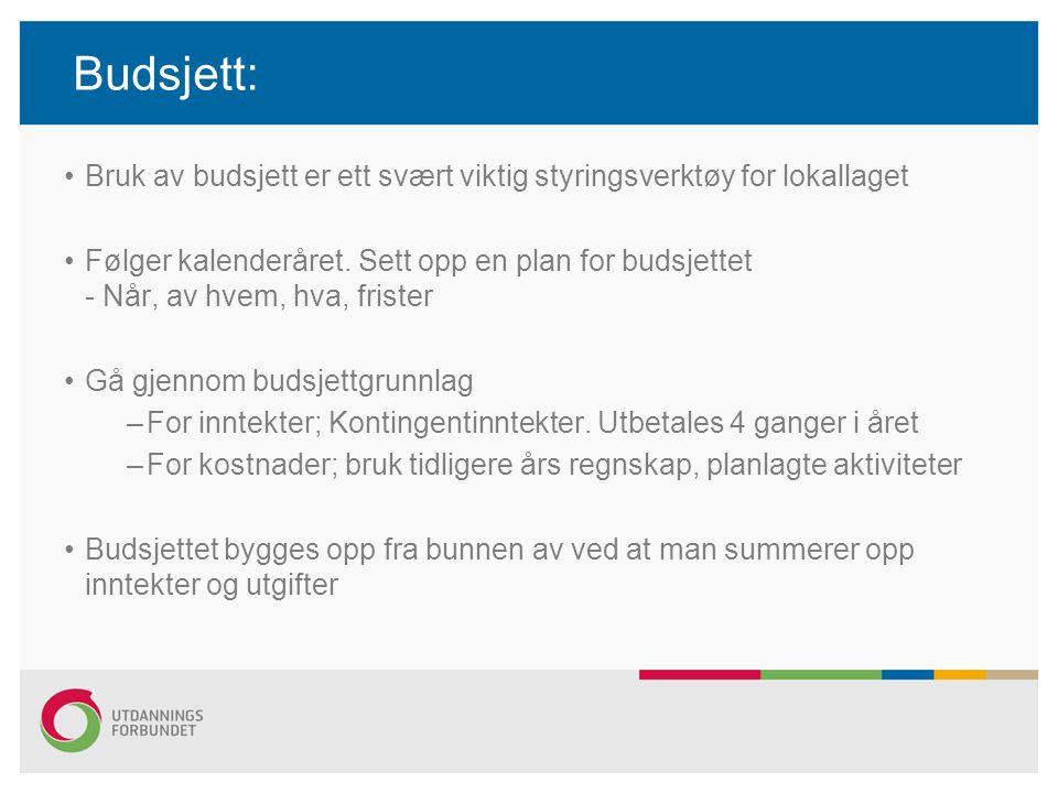 Budsjett: Bruk av budsjett er ett svært viktig styringsverktøy for lokallaget Følger kalenderåret. Sett opp en plan for budsjettet - Når, av hvem, hva