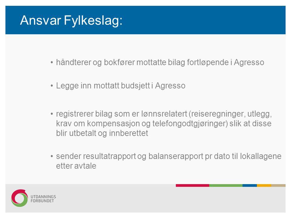 Ansvar Fylkeslag: håndterer og bokfører mottatte bilag fortløpende i Agresso Legge inn mottatt budsjett i Agresso registrerer bilag som er lønnsrelate