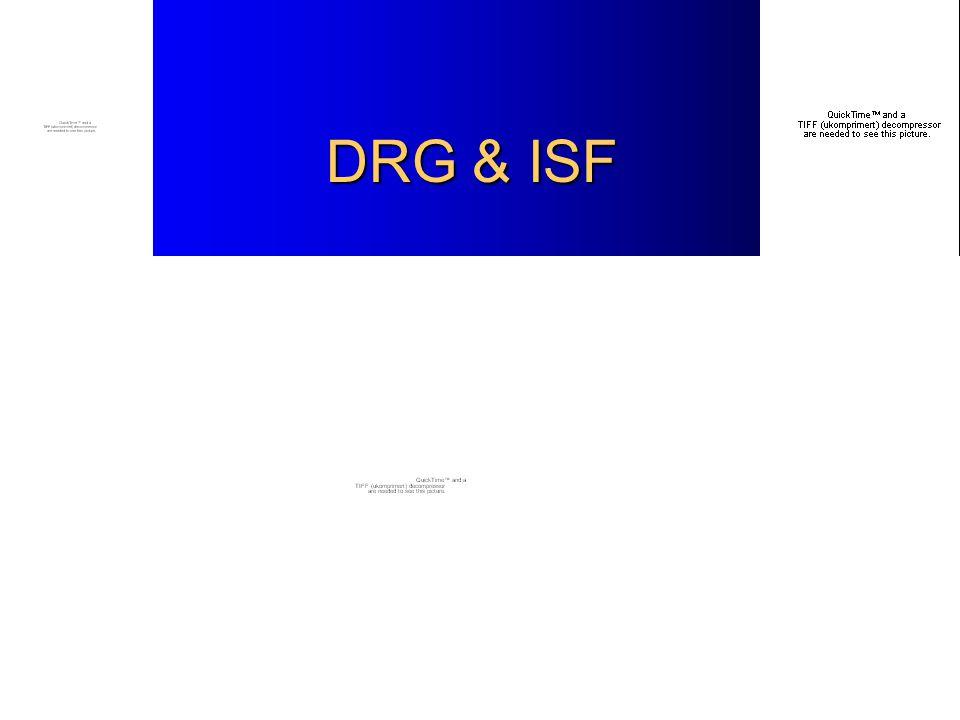 DRG & ISF DRG & ISF
