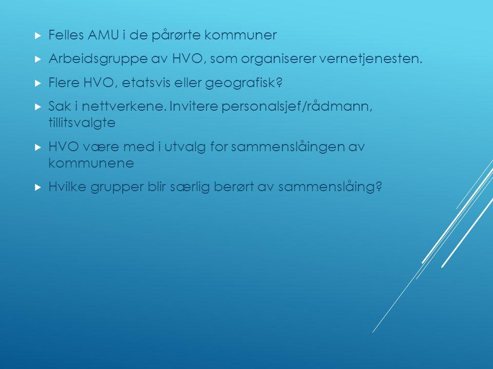  Felles AMU i de pårørte kommuner  Arbeidsgruppe av HVO, som organiserer vernetjenesten.