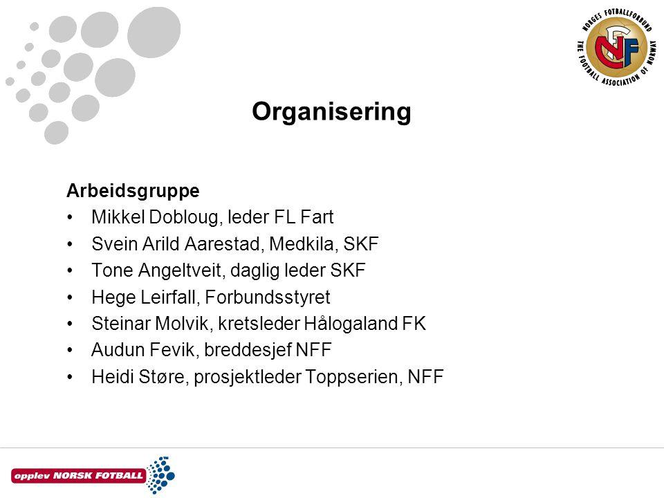 Organisering Arbeidsgruppe Mikkel Dobloug, leder FL Fart Svein Arild Aarestad, Medkila, SKF Tone Angeltveit, daglig leder SKF Hege Leirfall, Forbundss