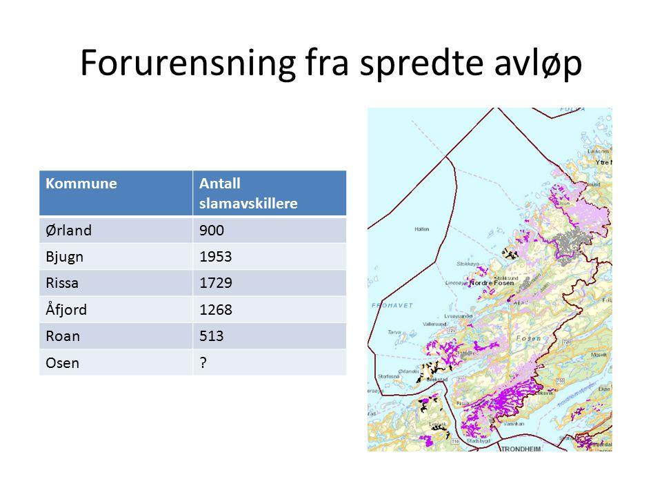 Forurensning fra spredte avløp KommuneAntall slamavskillere Ørland900 Bjugn1953 Rissa1729 Åfjord1268 Roan513 Osen