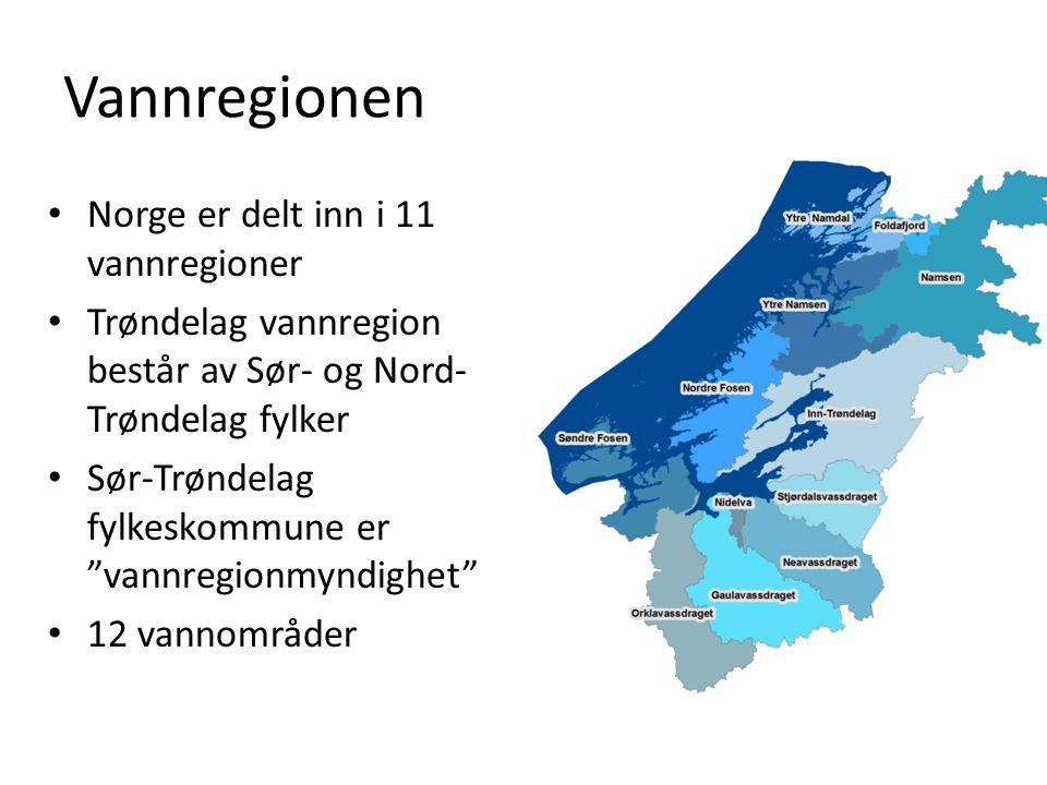 Vannregionen Norge er delt inn i 11 vannregioner Trøndelag vannregion består av Sør- og Nord- Trøndelag fylker Sør-Trøndelag fylkeskommune er vannregionmyndighet 12 vannområder