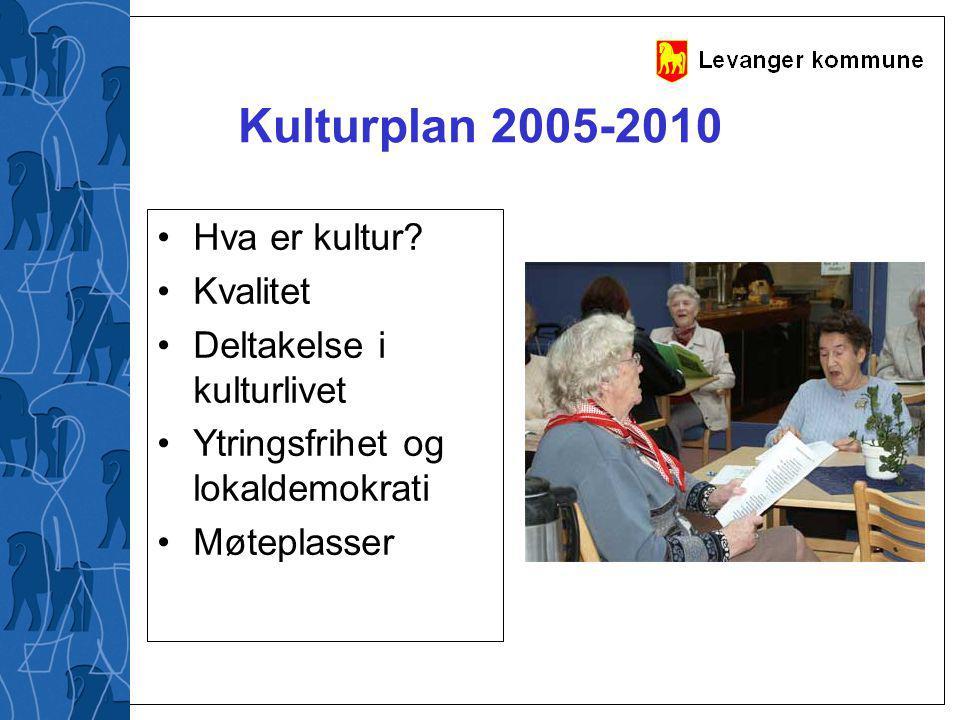 Kulturplan 2005-2010 Hva er kultur? Kvalitet Deltakelse i kulturlivet Ytringsfrihet og lokaldemokrati Møteplasser