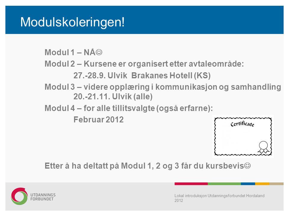 Modulskoleringen! Modul 1 – NÅ Modul 2 – Kursene er organisert etter avtaleområde: 27.-28.9. Ulvik Brakanes Hotell (KS) Modul 3 – videre opplæring i k