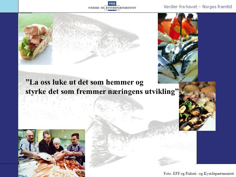 Verdier fra havet – Norges framtid Brødtekst/punkter 18 pkt Nye markeder La oss luke ut det som hemmer og styrke det som fremmer næringens utvikling Foto: EFF og Fiskeri- og Kystdepartementet