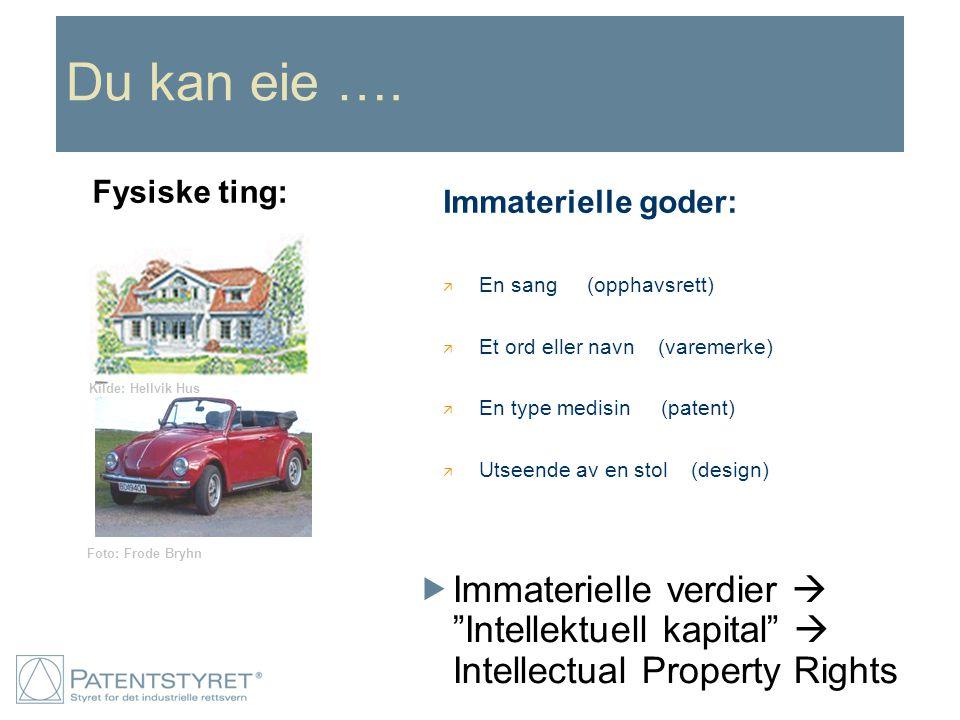"Du kan eie ….  Immaterielle verdier  ""Intellektuell kapital""  Intellectual Property Rights Foto: Frode Bryhn Kilde: Hellvik Hus Immaterielle goder:"