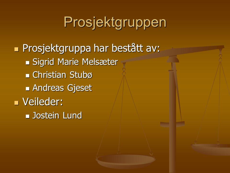 Prosjektgruppen Prosjektgruppa har bestått av: Prosjektgruppa har bestått av: Sigrid Marie Melsæter Sigrid Marie Melsæter Christian Stubø Christian St