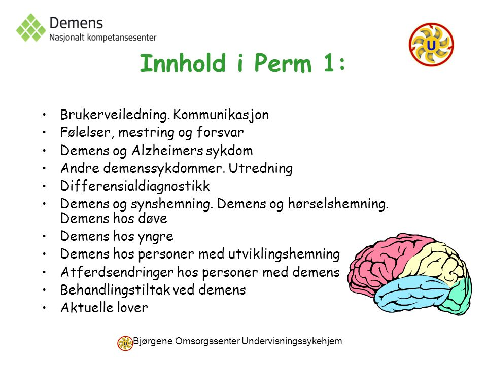 Bjørgene Omsorgssenter Undervisningssykehjem Innhold i Perm 1: Brukerveiledning. Kommunikasjon Følelser, mestring og forsvar Demens og Alzheimers sykd