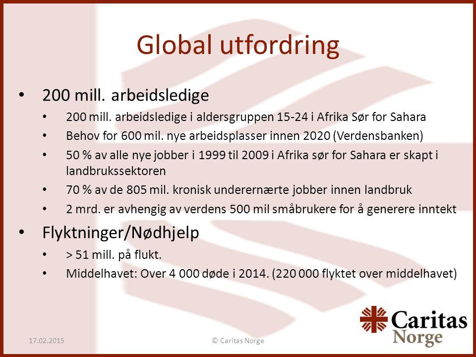 Global utfordring © Caritas Norge17.02.2015 200 mill. arbeidsledige 200 mill. arbeidsledige i aldersgruppen 15-24 i Afrika Sør for Sahara Behov for 60