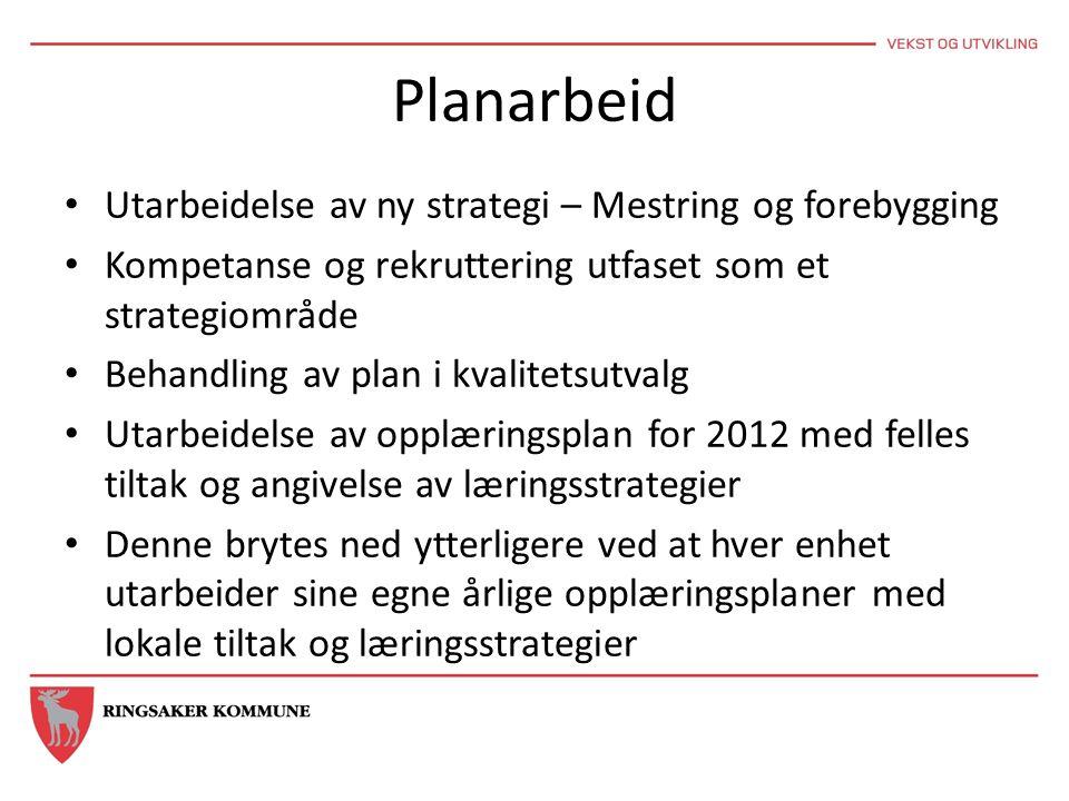 Planarbeid Utarbeidelse av ny strategi – Mestring og forebygging Kompetanse og rekruttering utfaset som et strategiområde Behandling av plan i kvalite