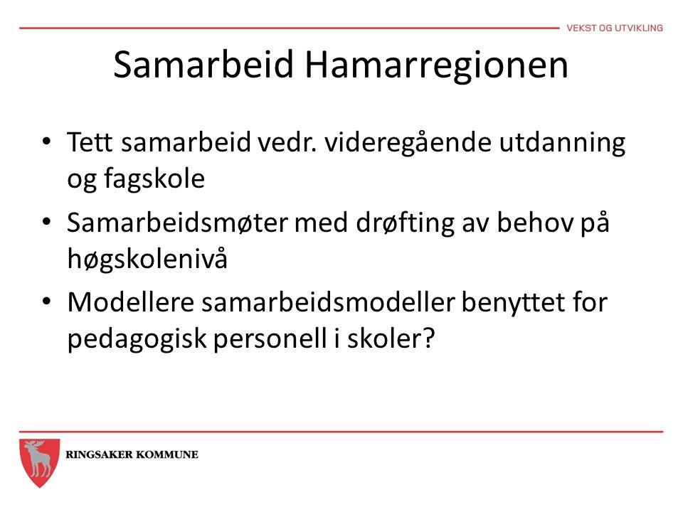 Samarbeid Hamarregionen Tett samarbeid vedr. videregående utdanning og fagskole Samarbeidsmøter med drøfting av behov på høgskolenivå Modellere samarb