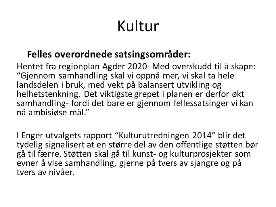 Vegen videre Noen tiltak som prioriteres vil måtte operasjonaliseres og settes inn i en realistisk tidsplan frem mot 2020.