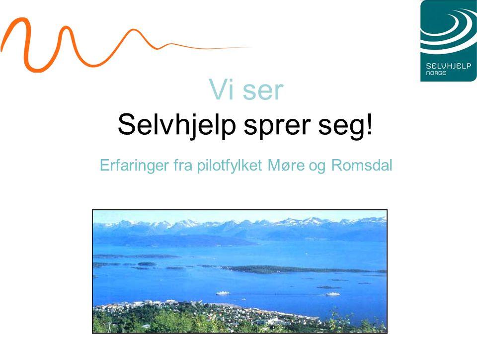 Vi ser Selvhjelp sprer seg! Erfaringer fra pilotfylket Møre og Romsdal