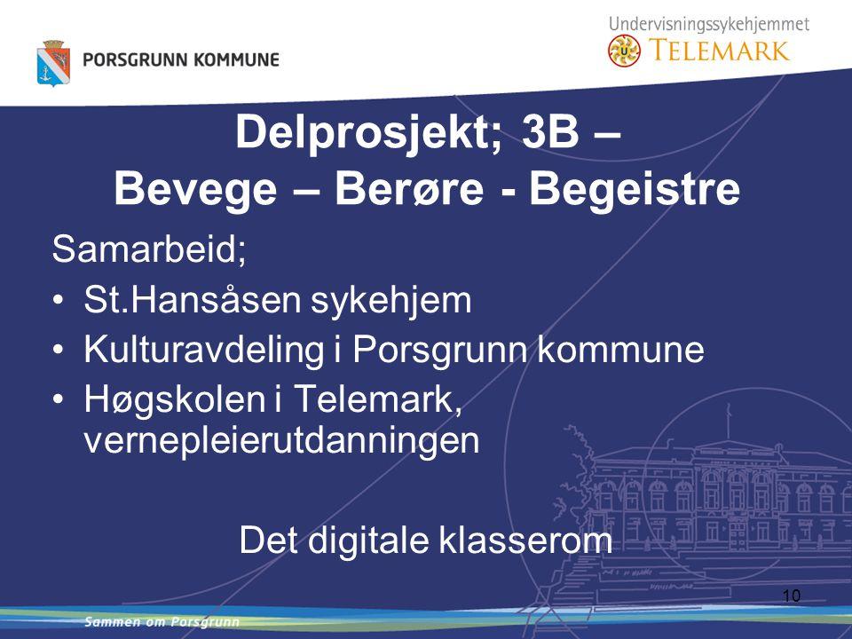 10 Samarbeid; St.Hansåsen sykehjem Kulturavdeling i Porsgrunn kommune Høgskolen i Telemark, vernepleierutdanningen Det digitale klasserom Delprosjekt; 3B – Bevege – Berøre - Begeistre