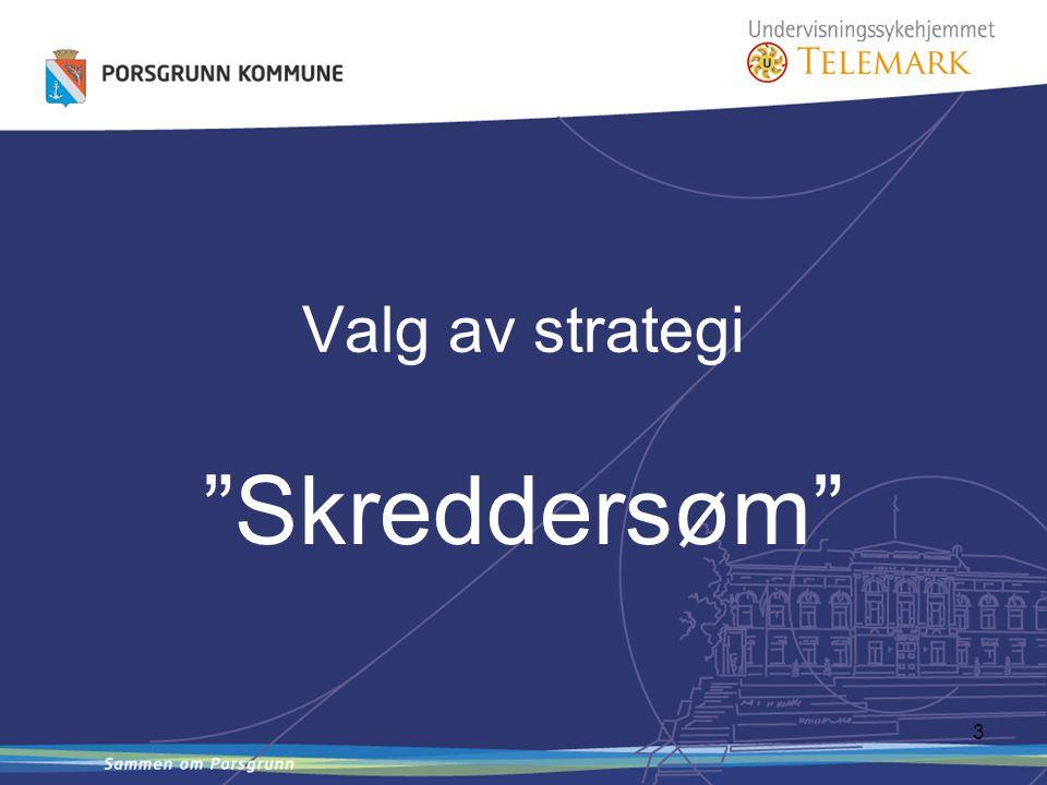 3 Valg av strategi Skreddersøm