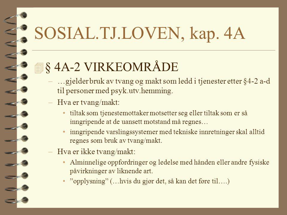 SOSIAL.TJ.LOVEN, kap.4A 4 VESENTLIG SKADE –Betydelig omfang og/eller ha alvorlige konsekvenser.