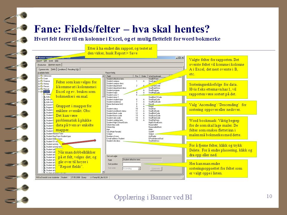 Fane: Common info, diverse om rapporten screenshoten må oppdateres, det har kommet tre faner nede til høyre, for options og adresser, samt en ny for d