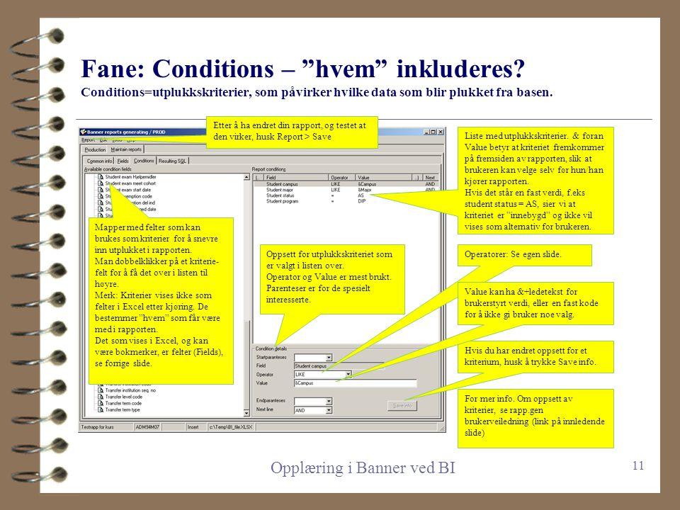 Fane: Fields/felter – hva skal hentes? Hvert felt fører til en kolonne i Excel, og et mulig flettefelt for word bokmerke Opplæring i Banner ved BI Fel