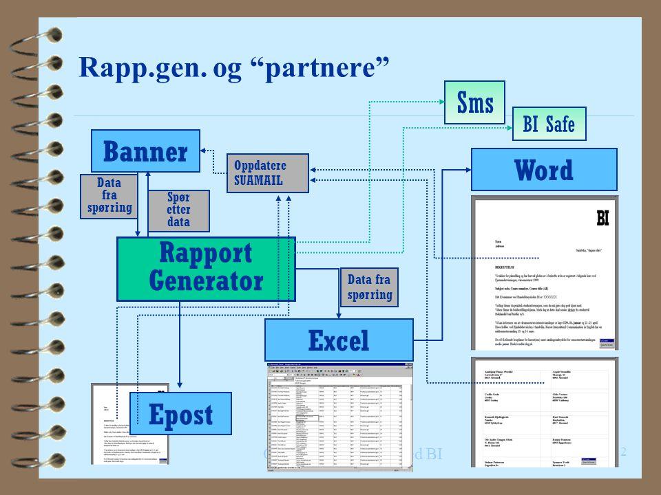 Intro.kurs – Rapportgeneratoren, Agenda 4 Generelt om rapp.gen 4 Skjermbildene i rapp.gen 4 Kjøre rapporter 4 Filtrering og (litt) pivotering 4 Kopier