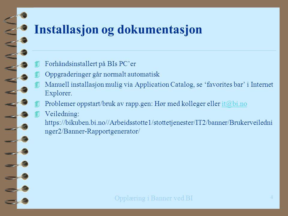 Opplæring i Banner ved BI Fakta om rapportgeneratoren 4 Skrevet i Visual Basic av Aslak Vaa, første versjon i 1997 i forbindelse med innføring av Bann
