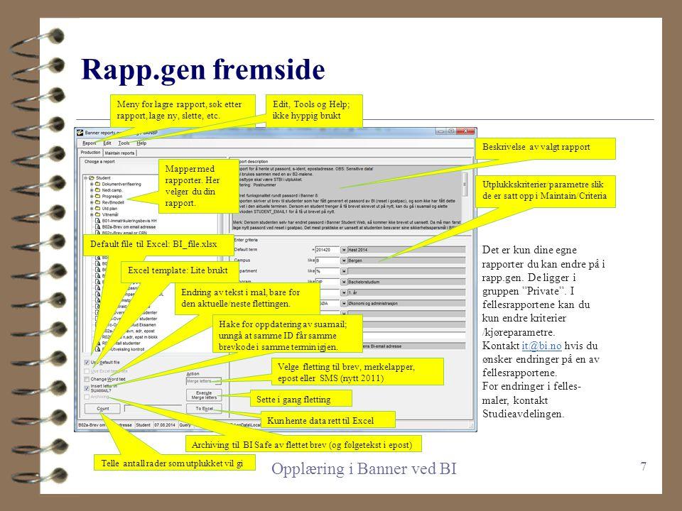 Stikkord/huskelapp-agenda 4 Innledende om Rapp.gen 4 Gjennomgang fremside og kriterier 4 Kjøre rapport til Excel (f.eks R01a) 4 Filtrere og pivotere 4