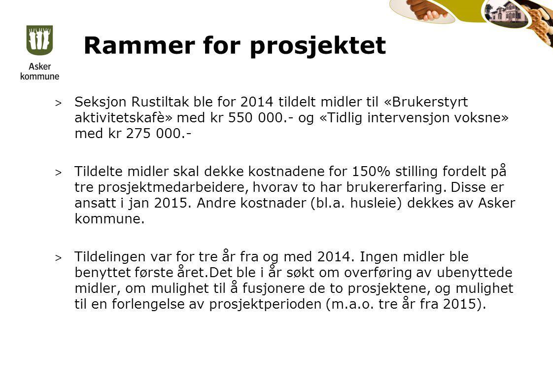 Rammer for prosjektet > Seksjon Rustiltak ble for 2014 tildelt midler til «Brukerstyrt aktivitetskafè» med kr 550 000.- og «Tidlig intervensjon voksne