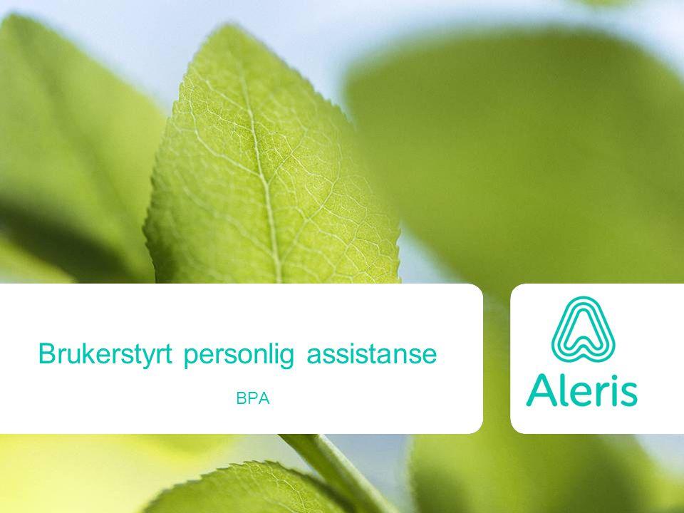 Brukerstyrt personlig assistanse BPA