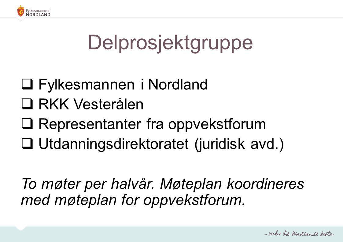 Delprosjektgruppe  Fylkesmannen i Nordland  RKK Vesterålen  Representanter fra oppvekstforum  Utdanningsdirektoratet (juridisk avd.) To møter per