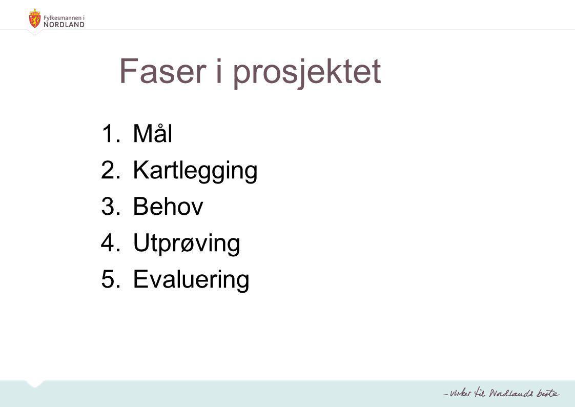 Faser i prosjektet 1.Mål 2.Kartlegging 3.Behov 4.Utprøving 5.Evaluering