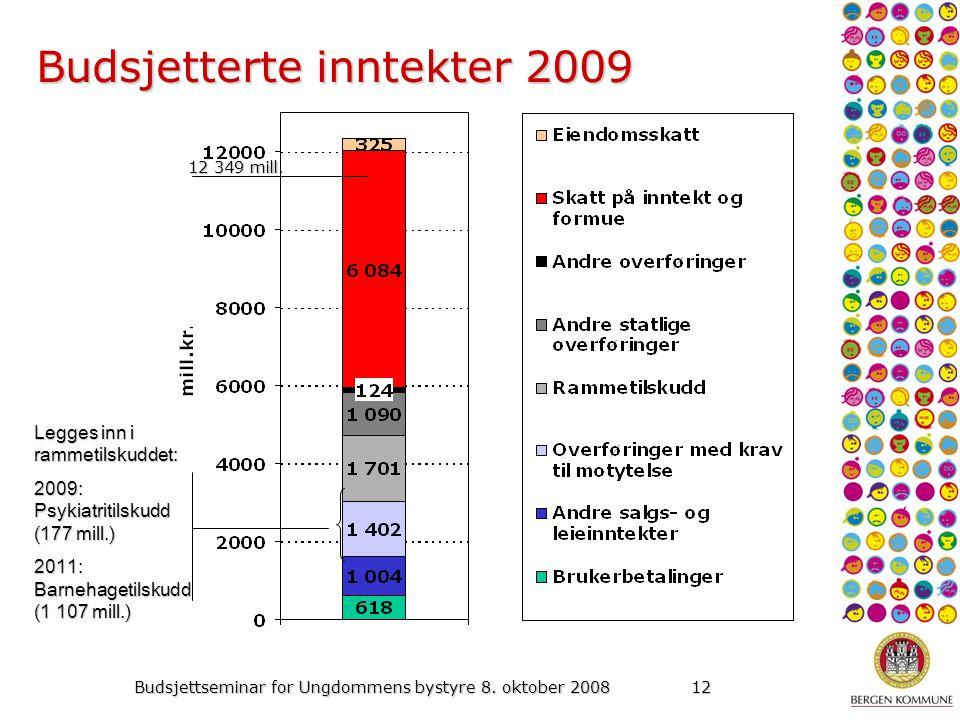 Budsjettseminar for Ungdommens bystyre 8. oktober 200812 Budsjetterte inntekter 2009 12 349 mill.