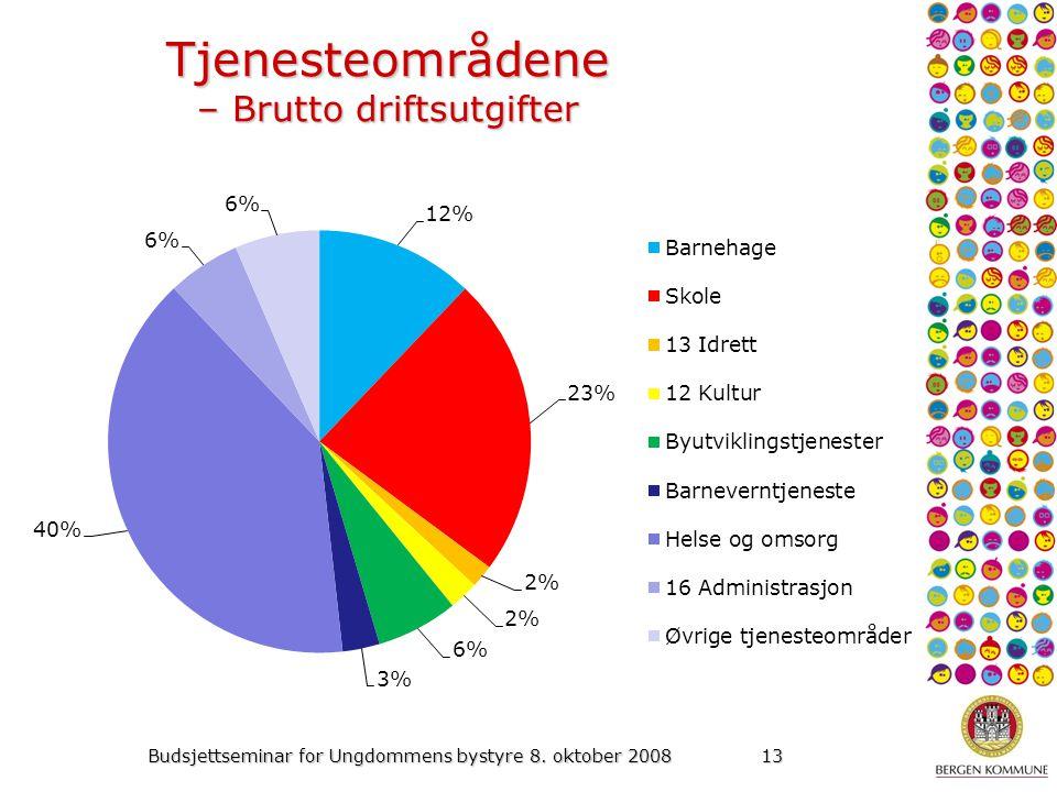 Budsjettseminar for Ungdommens bystyre 8. oktober 200813 Tjenesteområdene – Brutto driftsutgifter