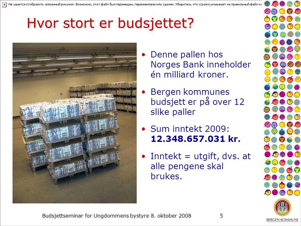 Budsjettseminar for Ungdommens bystyre 8. oktober 20085 Hvor stort er budsjettet.