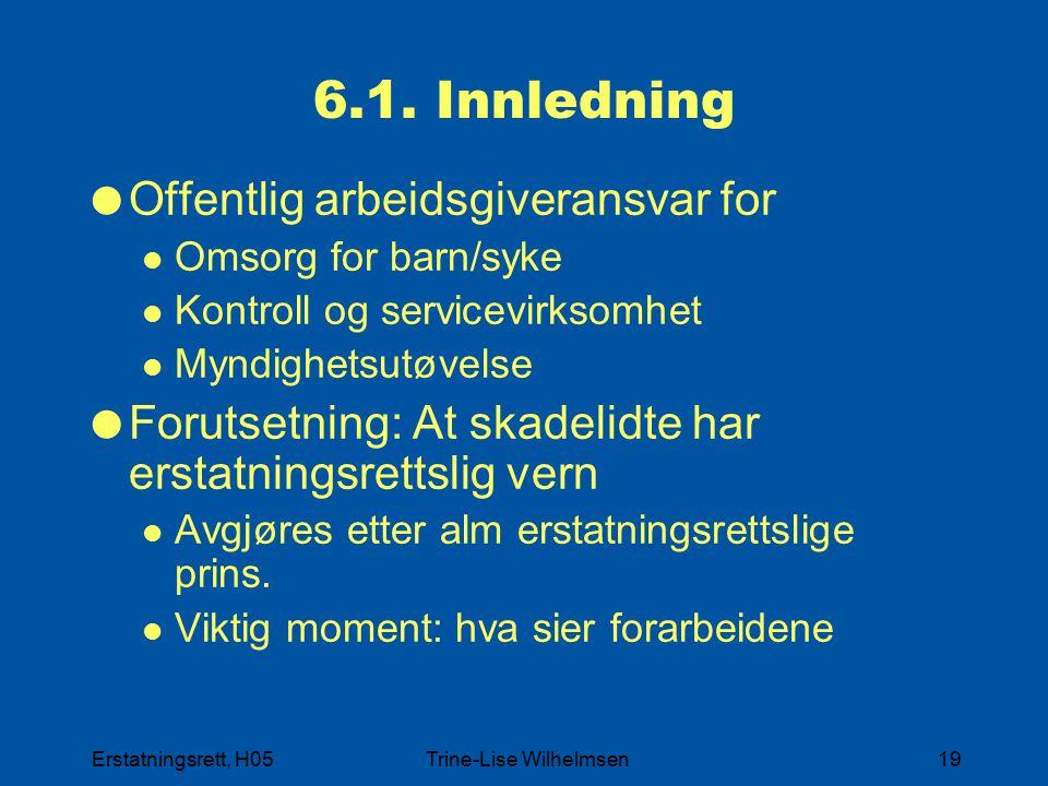 Erstatningsrett, H05Trine-Lise Wilhelmsen19 6.1. Innledning  Offentlig arbeidsgiveransvar for Omsorg for barn/syke Kontroll og servicevirksomhet Mynd