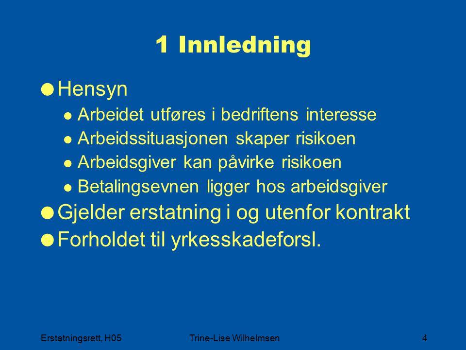 Erstatningsrett, H05Trine-Lise Wilhelmsen4 1 Innledning  Hensyn Arbeidet utføres i bedriftens interesse Arbeidssituasjonen skaper risikoen Arbeidsgiv