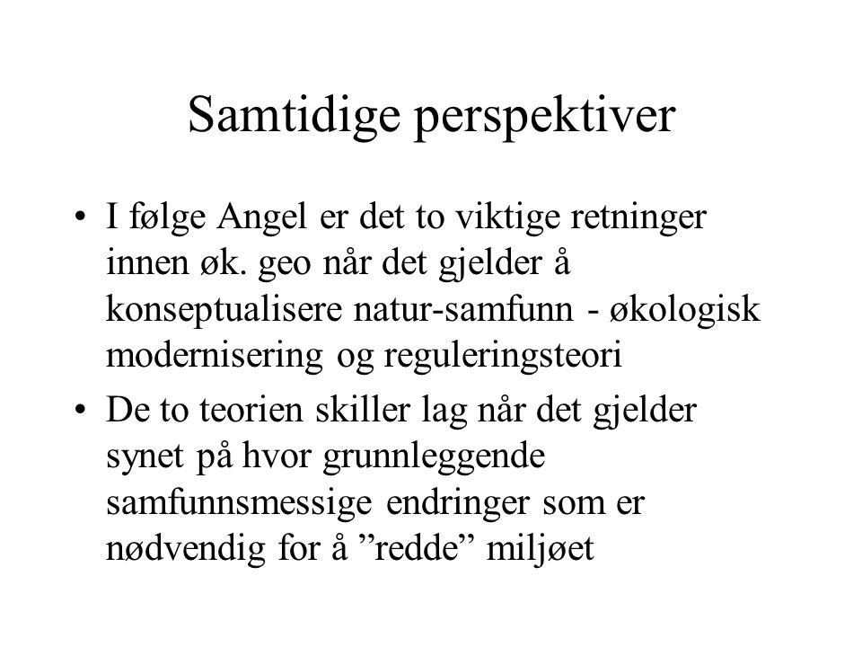 Samtidige perspektiver I følge Angel er det to viktige retninger innen øk.