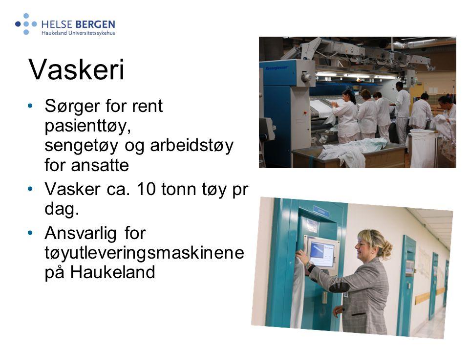 Vaskeri Sørger for rent pasienttøy, sengetøy og arbeidstøy for ansatte Vasker ca. 10 tonn tøy pr dag. Ansvarlig for tøyutleveringsmaskinene på Haukela