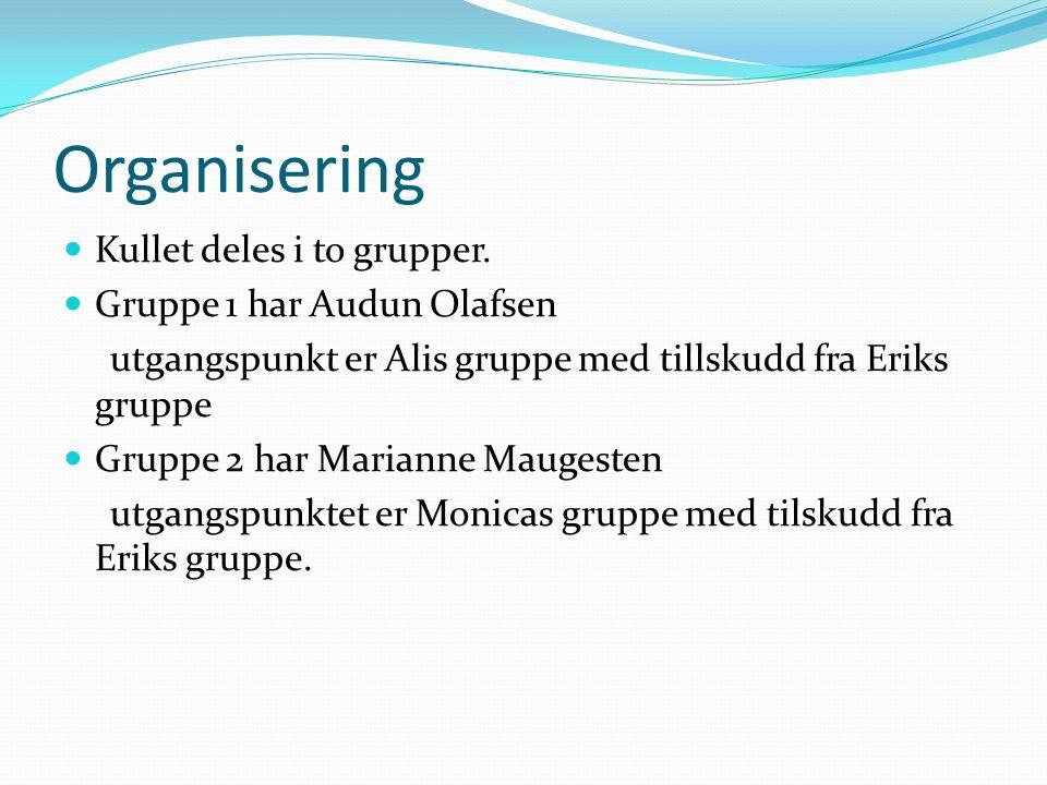 Organisering Kullet deles i to grupper. Gruppe 1 har Audun Olafsen utgangspunkt er Alis gruppe med tillskudd fra Eriks gruppe Gruppe 2 har Marianne Ma